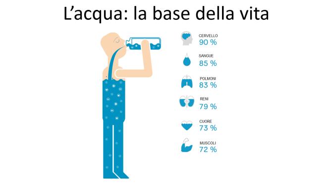 Acqua_Percentuali
